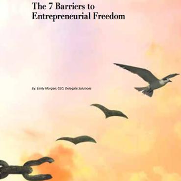 entrepreneurial-freedom-snapshot-18